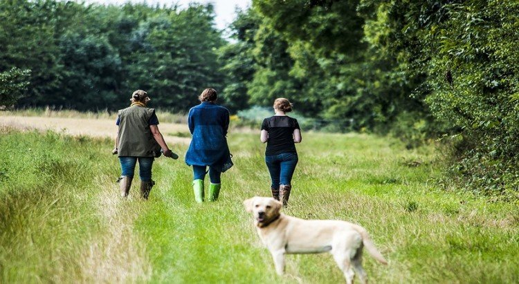 Pet friendly, dog friendly farmstay holiday