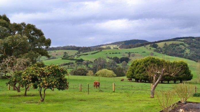 Gippsland, Victoria Australia