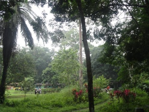 Pulau-Ubin Park, Singapore