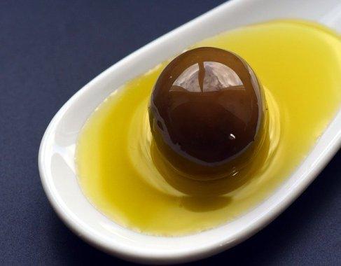 Preparing olive oil, agriturismo Sicily