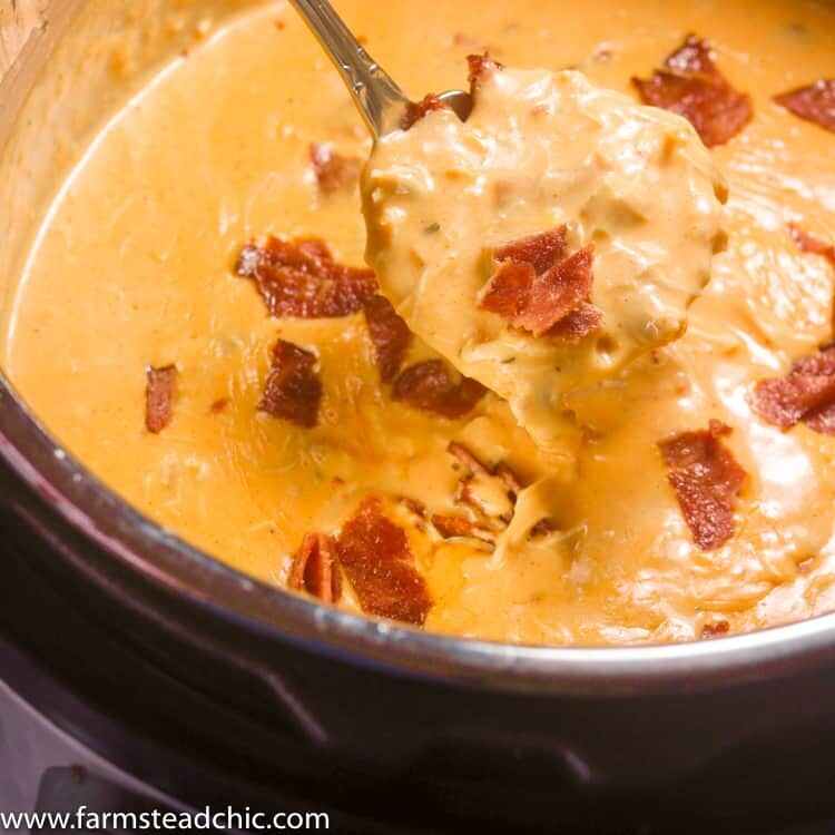 Keto Instant Pot Buffalo Chicken Bacon Soup