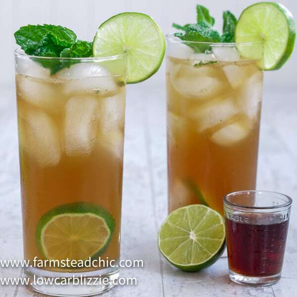 This Low Carb, Keto Spiced Rum Mojito is a sugar-free, snappy take on the traditional Cuban cocktail. While a regular mojito can add up to 50 carbs (or more), this Keto Mojito is less than two carbs! You can't go wrong with dark spiced rum, tangy lime juice and fresh mint leaves.   www.farmsteadchic.com   #ketococktail #lowcarbcocktail #mojito #ketomojito #lowcarbmojito #farmsteadchic #darkrummojito #spicedrummojito