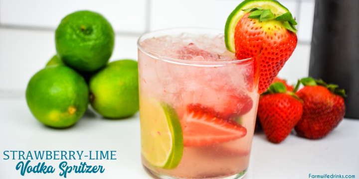 Strawberry Lime Vodka Spritzer is a refreshing cocktail recipe made with fresh fruit, vodka, and soda water for a low-carb cocktail.