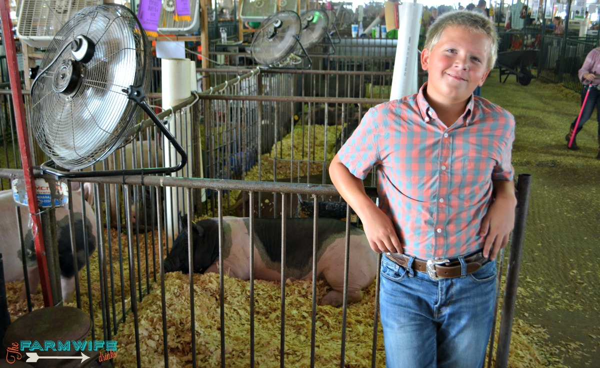 4-Her with his pig