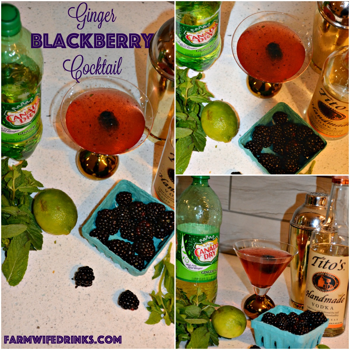 This ginger blackberry cocktail is a simple vodka cocktail recipe. No fancy, hard to find ingredients. Just simple flavors combining for a refreshing drink.