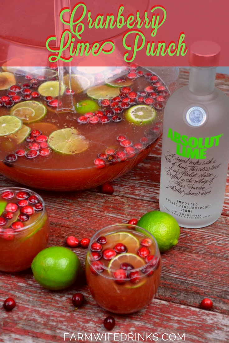 Vodka Spiked Cranberry Lime Punch is the perfect Christmas punch as it an be kid friendly and have a dose of lime vodka for the adults. #VodkaPunch #Cranberry #Punch