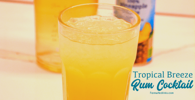 Tropical Breeze Rum Cocktail – Pineapple Banana Rum Drink