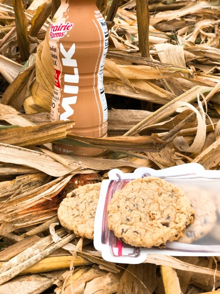 Farmgirl Chocolate Chippers from Farmwife Feeds are a settle oatmeal version of chocolate chip cookies. #oatmeal #chocolatechip #cookie #recipe