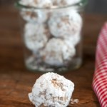 Easy No-Bake Energy Bites Base