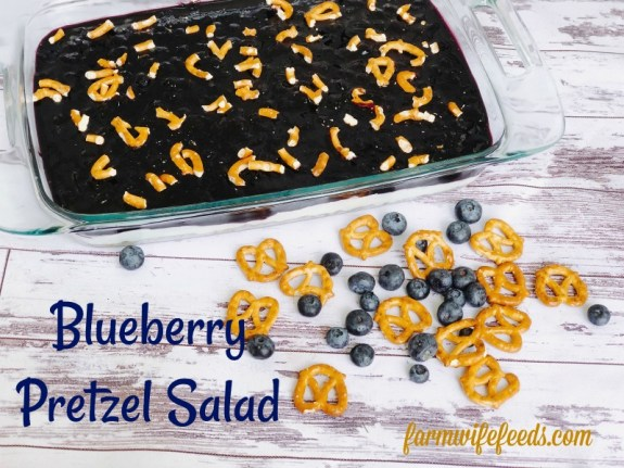 Blueberry Pretzel Salad from Farmwife Feeds a delicious spin on a classic, this version is made without Jello and uses fresh blueberries. #salad #creamcheese #recipe #blueberry #blueberries