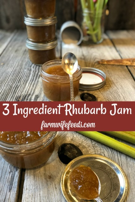 Easy Rhubarb Jam from Farmwife Feeds is a 3 ingredient sweet treat good for so many recipes and your morning toast. #rhubarb #jam #recipe