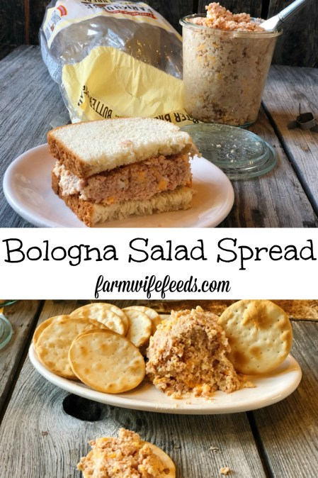 Bologna Salad Spread from Farmwife Feeds is easy to put together and keep in the refrigerator for sandwich or snacks. #pork #ham #bologna #sandwich