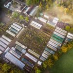 Farmyard Nurseries aerial view