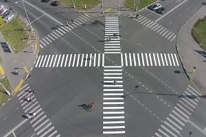 diagonalnaya-zebra