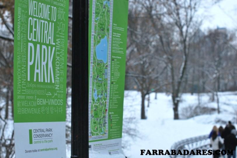 Central Park todo branquinho - Nova York