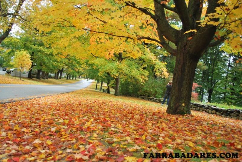 Adoro essa foto!! - outono em Bennington, Vermont
