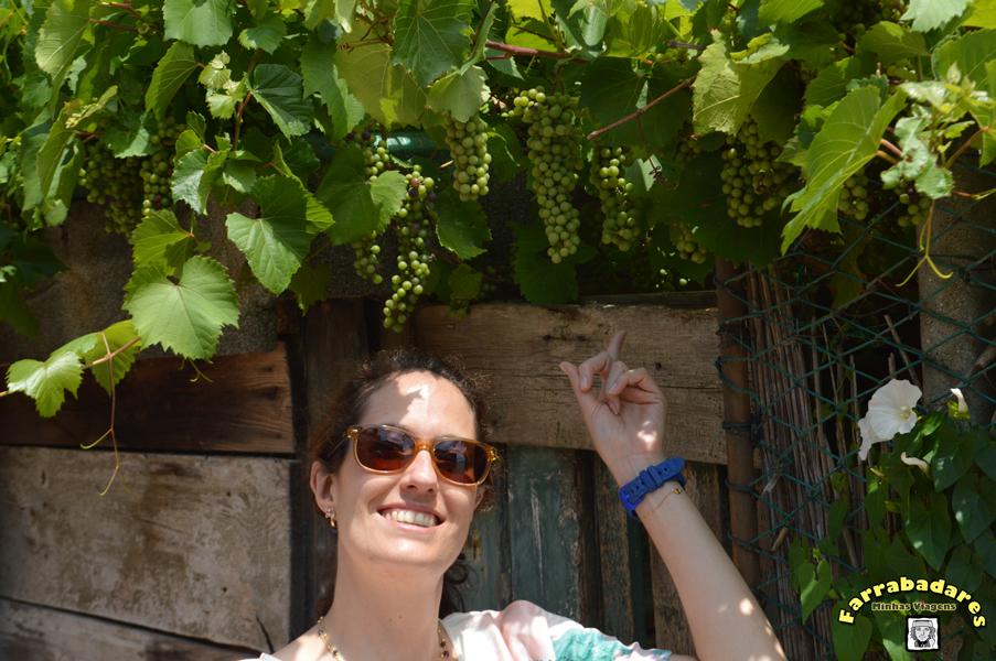 Uvas em Murano