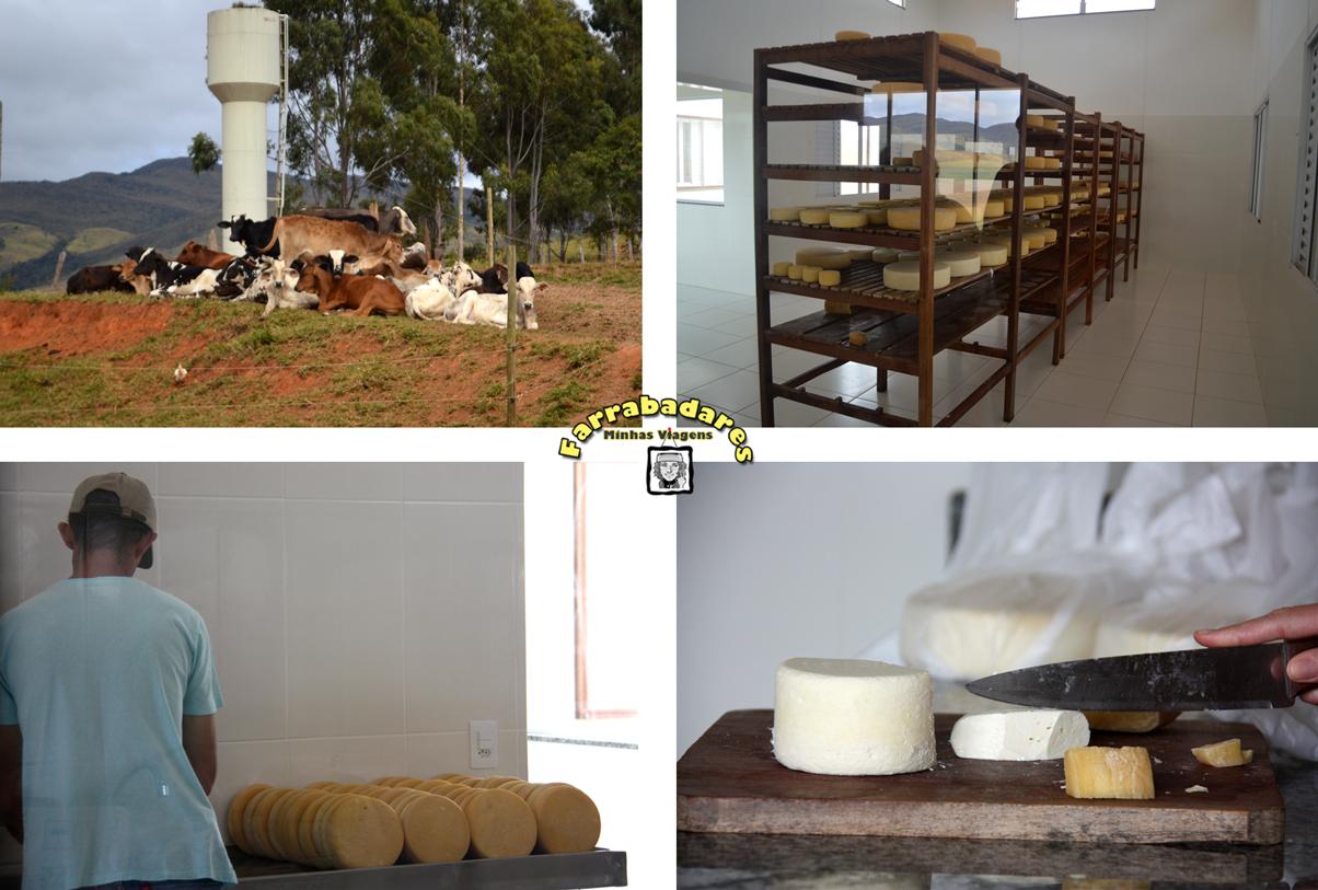 Queijo da Canastra na Fazenda Agro Serra