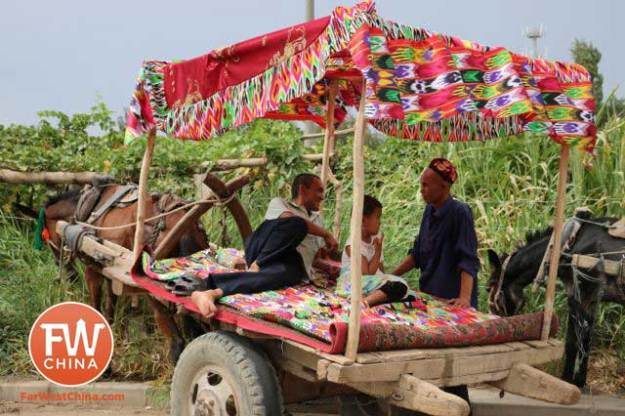 A beautiful Uyghur donkey cart in Turpan, Xinjiang