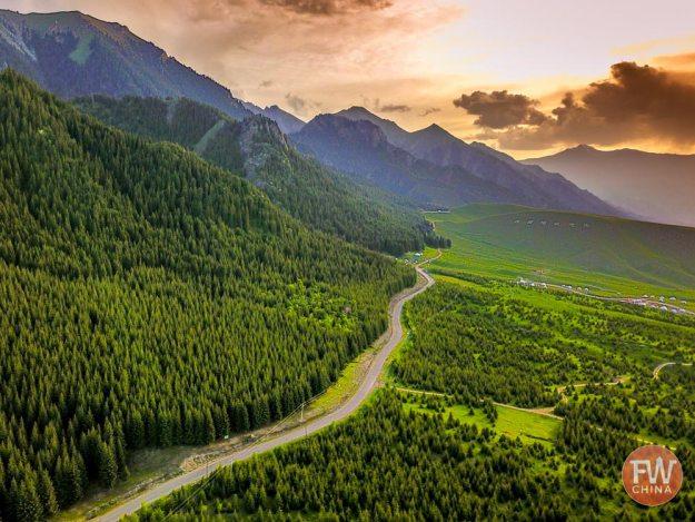 A beautiful forest road in Wusu, Xinjiang China