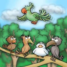 Parrot / part of a children magazine
