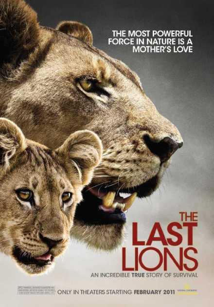 فيلم The Last Lions 2011 مترجم