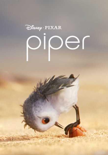 فيلم Piper 2016 مترجم