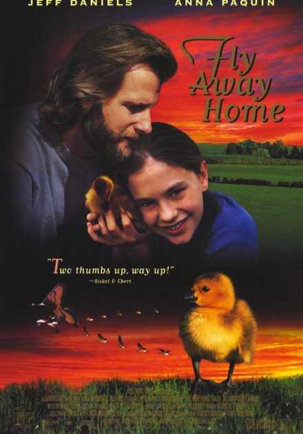 فيلم Fly Away Home 1996 مترجم