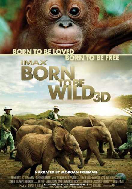 فيلم Born To Be Wild 2011 مترجم