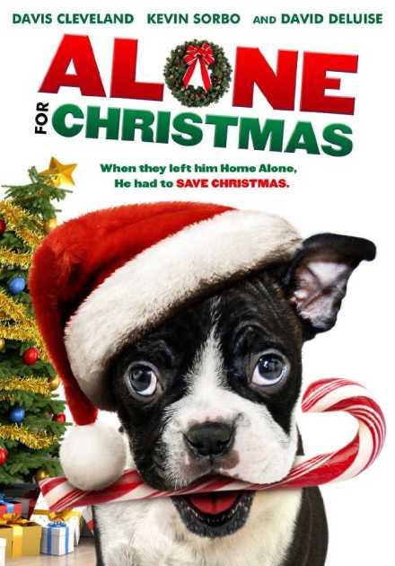 فيلم Alone for Christmas 2013 مترجم