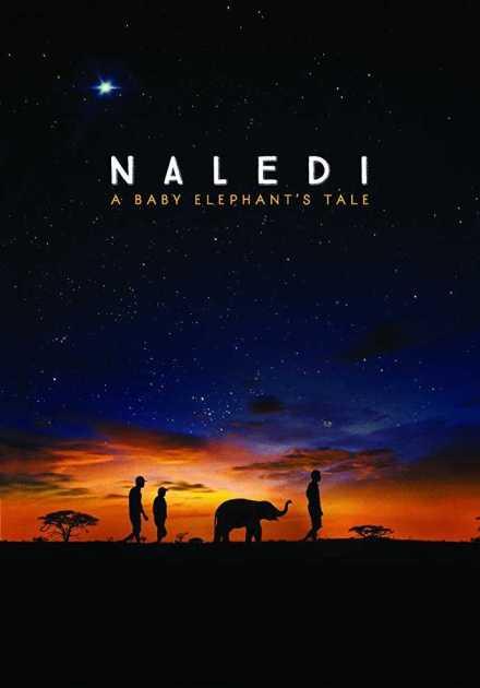 فيلم Naledi A Baby Elephant's Tale 2016 مترجم