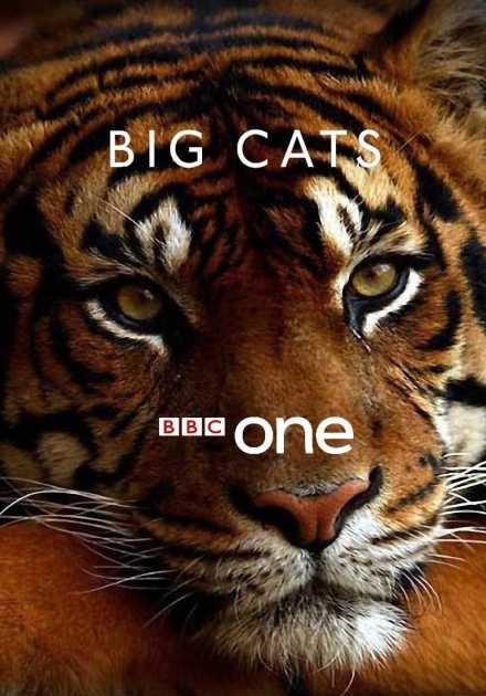 مسلسل Big Cats الموسم الأول