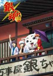 أنمي Gintama – الحلقة 253