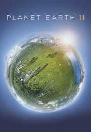 مسلسل Planet Earth الموسم الثاني