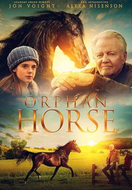فيلم Orphan Horse 2018 مترجم