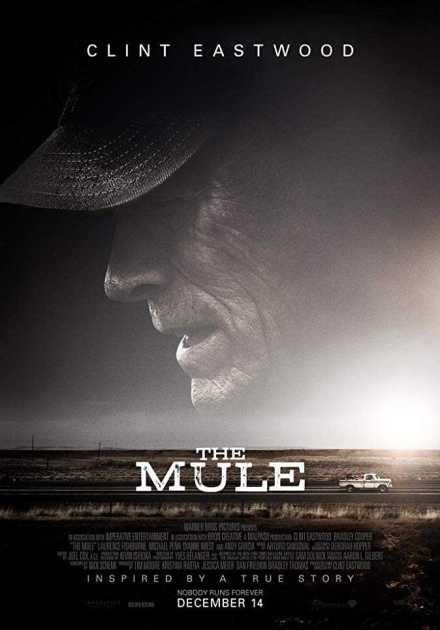 فيلم The Mule 2018 مترجم
