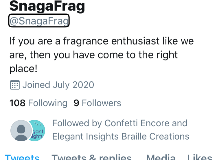 Screenshot of the @SnagAFrag Twitter page