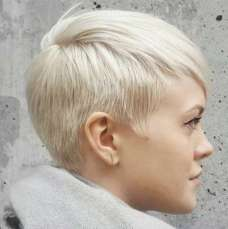 Short Hairstyle 2017 - 3