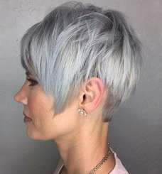 Short Hairstyle Grey Hair - 6