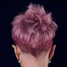Alineh Short Hairstyles - 6