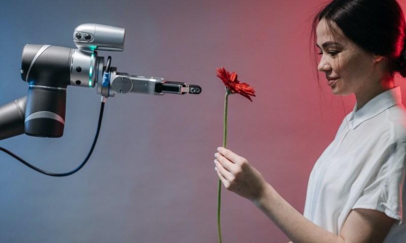 Um mulher jovem a receber uma rosa vermelha de um robô. Cibersespaço.