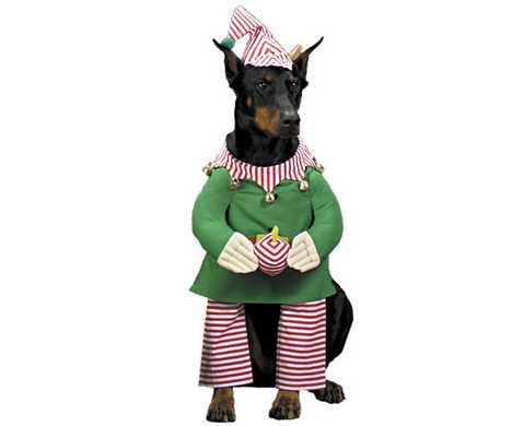 christmas-costumes-pets