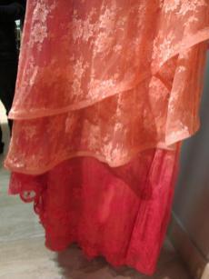 vestidos de festa patricia bonaldi (26)