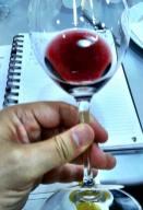 Degustação Vinícola Coppo na Mistral _n (1)