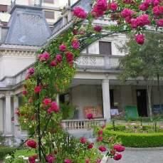 Casa-das-Rosas_ramo-de-rosa