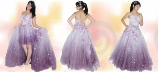 Vestidos 15 anos - Bele e a fera - vestidos de princesas- Baile de debutante (13)