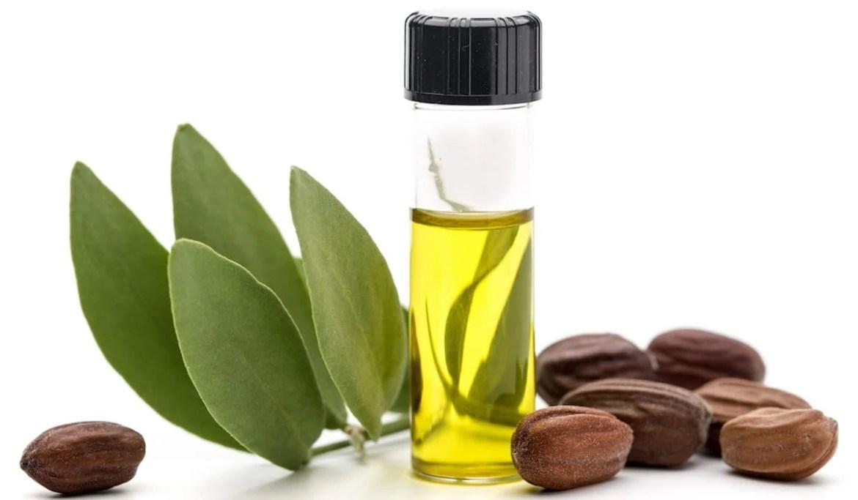 Foto de Potinho com óleo de jojoba, frutas e galho da planta