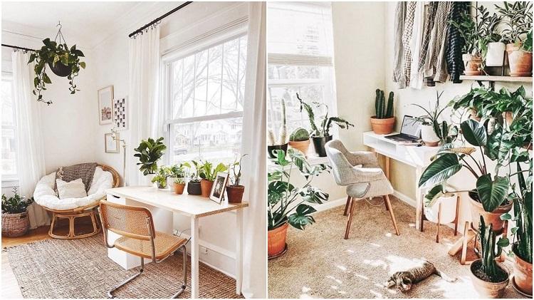 duas fotos de home office branco com plantas