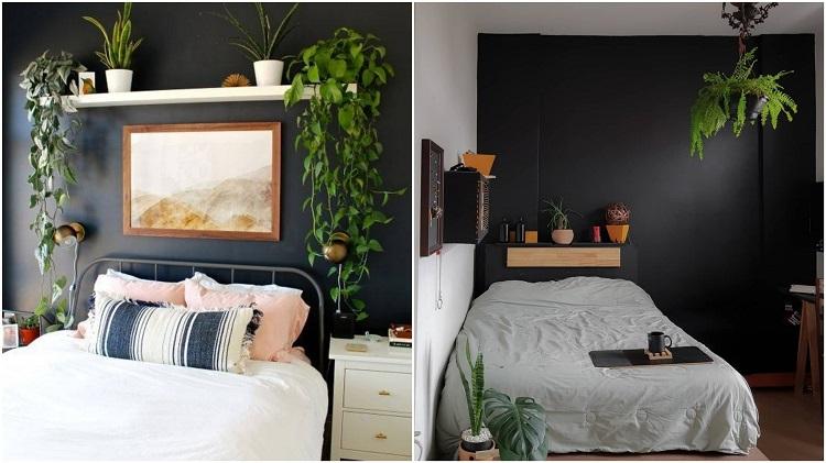 dois quartos com selva urbana