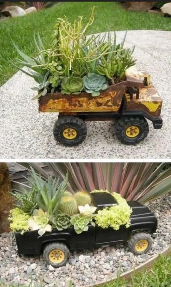 Carros decorados com suculentas